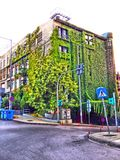Grün überall Lizenzfreies Stockbild