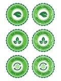 Grün 100% organisches natürliches eco Retro- Kennsätze vektor abbildung