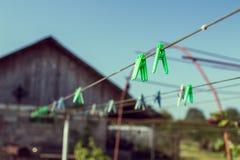 Grün Stockfotos