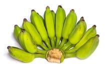 Grün angebaute Banane Lizenzfreies Stockbild