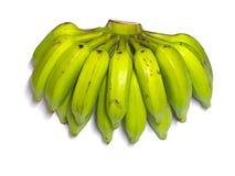 Grün angebaute Banane Lizenzfreie Stockbilder