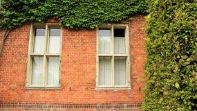 Grün-Blätter und Fenster-Rahmen alte Holland House Lizenzfreie Stockfotos