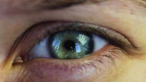 Grün-blaues aquamarines Auge der Makroschmierfilmbildung stock video footage