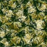 Grün des Schmetterlinges 04 Lizenzfreie Stockbilder