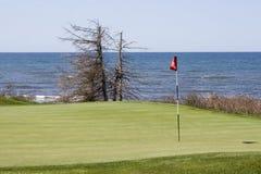 Grün eines Golfplatzes Lizenzfreie Stockfotografie