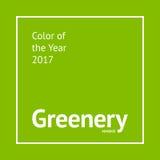 Grün färben Probe lizenzfreie stockbilder
