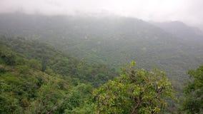 Grün ganz über einem Berg Stockfotografie
