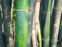 Grün geschnitzter Bambus Stockfoto
