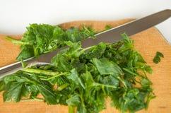 Grün, Kraut, Lebensmittel, essend, Petersilie, gesund, Anlage Lizenzfreies Stockfoto