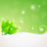 Grün lässt Ökologiehintergrund stock abbildung