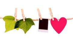 Grün lässt Herzform und das sofortige Fotohängen Stockbilder