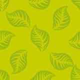 Grün lässt nahtloses Muster ENV 10 Stockfotos