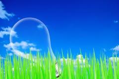 Grün mit blauem Himmel und Glühlampe Stockfotografie