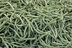 Grün oder Stangenbohnen Stockfoto