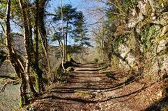 Grün und Schatten-Wandern Stockfoto