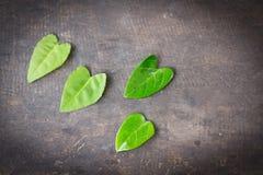Grün verlässt auf dem Tisch Darke-Ecke von immage, Herzgrün Stockfoto
