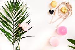 Grün verlässt, Kerzen, Blume, Makronen auf Weiß Schönheit flaches L Lizenzfreie Stockfotos