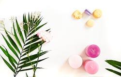 Grün verlässt, Kerzen, Blume, Makronen auf Weiß Schönheit flaches L Lizenzfreie Stockfotografie