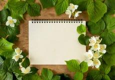 Grün verlässt mit weißen Blumen des Jasmins auf hölzernem Hintergrund Stockbild