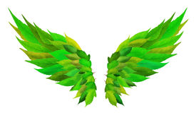 Grün wings Konzept Lizenzfreie Stockfotos