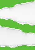 Grün zerrissener Papierhintergrund Lizenzfreies Stockfoto