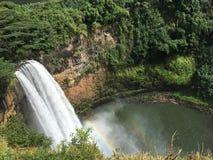 Grünbaum-Regenbogennebel wailea Wasserfallhawaiis Kauai stockbild