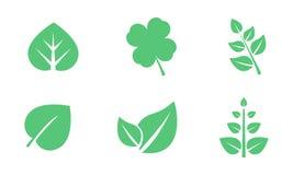 Grünblätter stellen, verschiedene Formen von Blättern von Bäumen ein und Anlagen vector Illustration auf einem weißen Hintergrund lizenzfreie abbildung