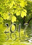 2017, Grünblätter und Wasserreflexionen Stockbild