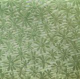 Grünbuch mit camomiles Lizenzfreies Stockfoto