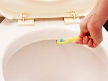 Gründliche Reinigungstoiletten benutzen eine Zahnbürste Stockfotos