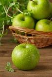 Grüne Äpfel. Stockfoto