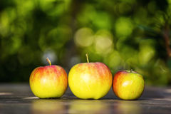 Grüne Äpfel auf dem Tisch Stockfotos