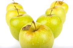 Grüne Äpfel getrennt auf Weiß stockfoto