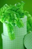 Grüne Überraschung Stockbilder