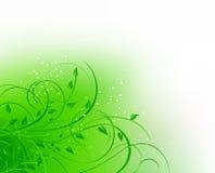 Grüne abstrakte mit Blumenkurve Lizenzfreies Stockbild