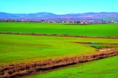 Grüne Ackerlandlandschaft Stockbild