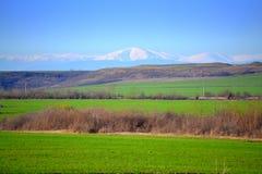Grüne Ackerlandlandschaft Lizenzfreie Stockfotografie