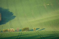 Grüne Ackerlandlandschaft der Landschaft Stockfoto