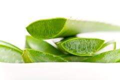 Grüne Aloevera-Scheiben Stockfotografie