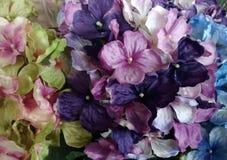 Grüne ANG-Purpurblumen stockbilder