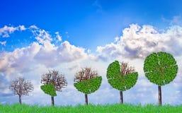 Grüne Anlagestrategie Stockbilder