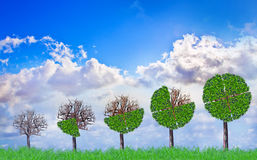 Grüne Anlagestrategie Stock Abbildung