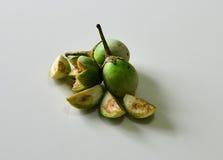 Grüne Aubergine Stockfotos