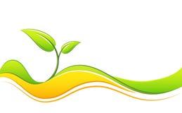 Grüne Auslegung Lizenzfreies Stockbild