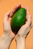 Grüne Avocado in der Hand auf einem orange Hintergrund Stockfoto