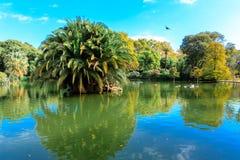 Grüne Bäume auf blauem See Stockbild