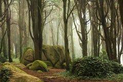 Grüne Bäume des Waldes mit sehr großen Felsen Lizenzfreie Stockfotografie
