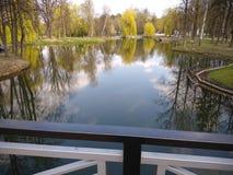 Gr?ne B?ume und blauer Himmel im Stadtpark Ivano-Frankivsk, Ukraine Fr?her Fr?hling stockfotos