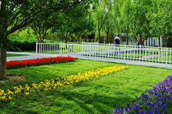 Grüne Bäume und Blume Stockfotos