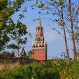 Grüne Bäume und Gras auf dem Hintergrund des Moskaus der Kreml und das rote Quadrat im Park Zaryadye lizenzfreie stockbilder